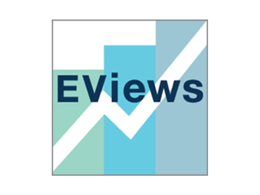 eviews   Aryan InfoTech   IT company with one stop professional
